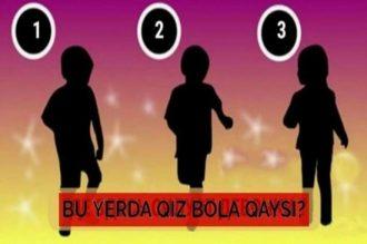 Psixologik test: Sizningcha rasmdagi qaysi soya qiz bolaniki?