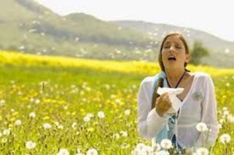 Bahorda nega allergiya kuchayadi